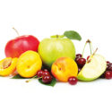 meyve-bahceleri